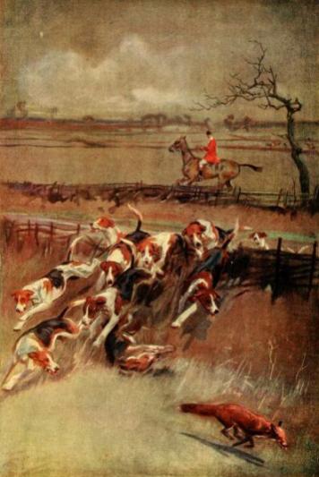 Fox&foxhounds